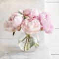 Pink peonies for elleash.blog